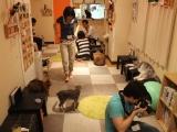 Neko Jalala: We Finally Visit an Akihabara CatCafe