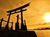 6 Tips For Surviving the JapaneseHeatwave