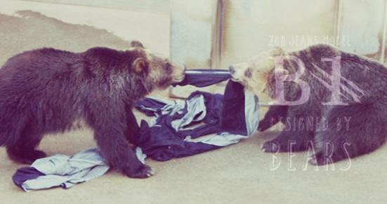 bear jeans