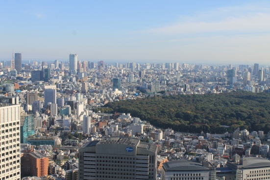 The free view from the main governmental offices in Shinjuku are a decent start