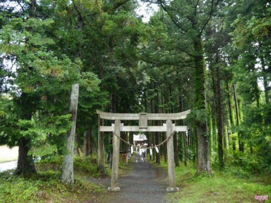 shrine 4