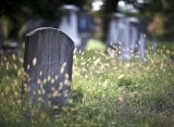 Morbid Yahoo! Ending Lets you E-Mail from the Grave