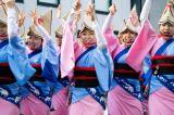 Pictures: Koenji Awa Odori2014