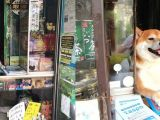 In Japan, You Can Buy Cigarettes from a Shibe Doge